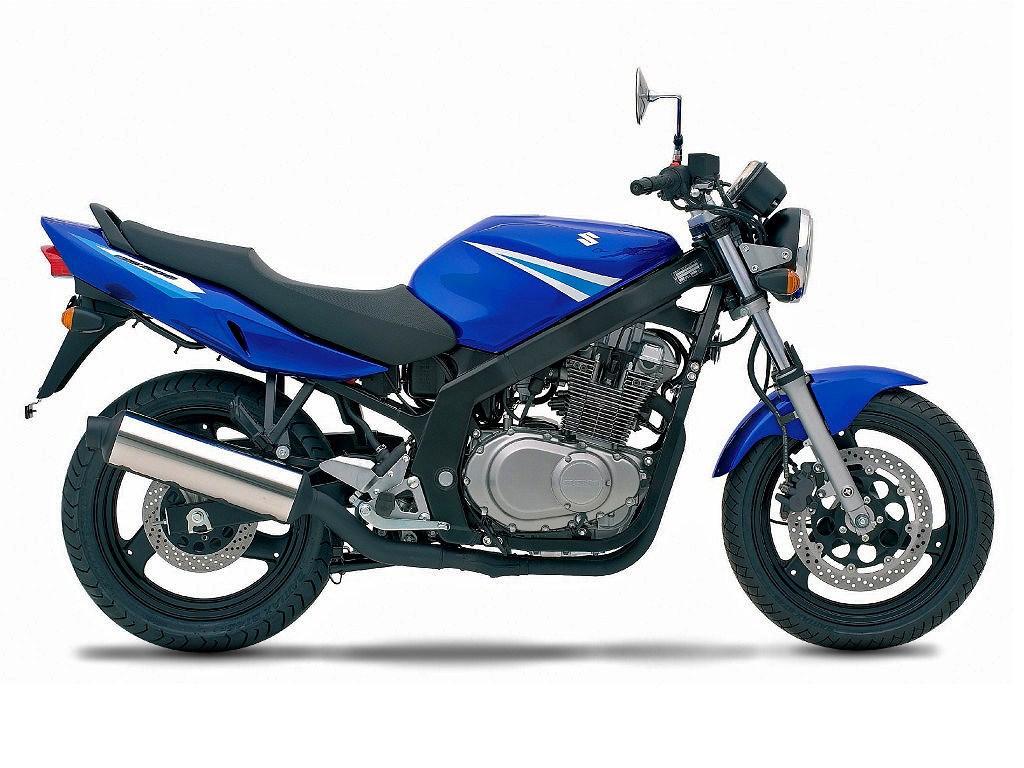 2005 Suzuki GS 500: pics, specs and information